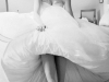 a touch of white - weddingplanner - sylvie van onsem
